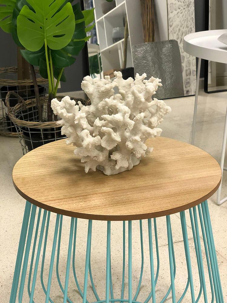 Showroom Coral
