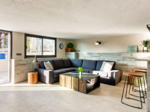 Industrial modern navy blue couch and living space