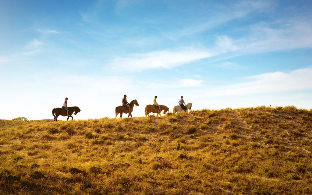 Horse back riding in nature